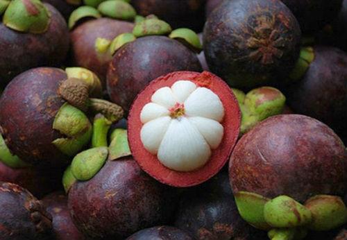мангустин - плод ягода